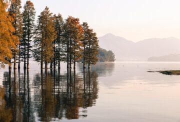 Finsk natur