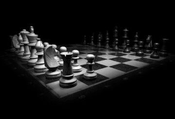 skakbræt